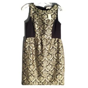 NWT Loft Black And Gold Mini Dress R15